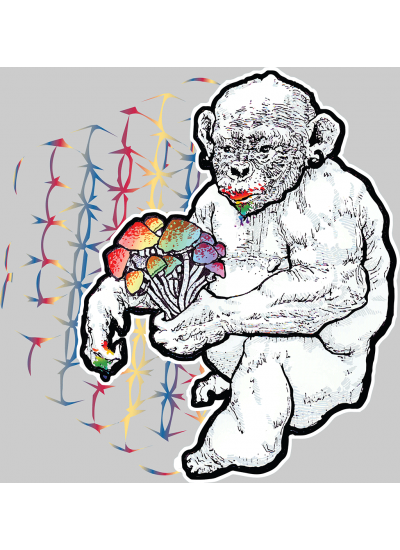 Stoned Ape Theory Shrooms T-Shirt - Mens, Heather Grey - Front Logo