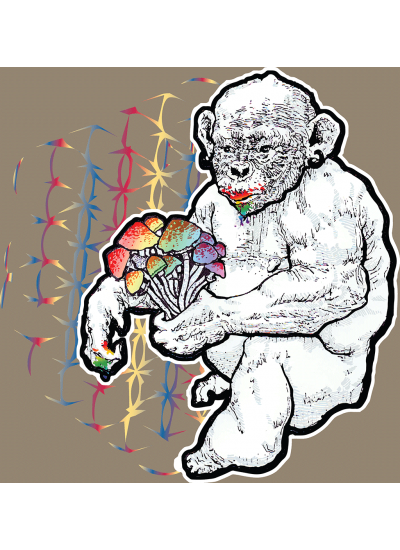 Stoned Ape Theory Shrooms T-Shirt - Womens - Front Logo