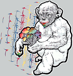 STONED APE THEORY SHROOMS T-SHIRT - MENS, HEATHER GREY