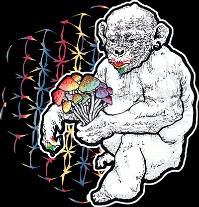 STONED APE THEORY SHROOMS T-SHIRT - WOMENS, BLACK